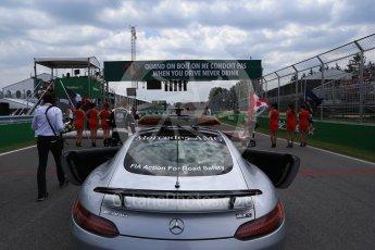 World © Octane Photographic Ltd. Formula 1 - Canadian Grand Prix. The grid. Circuit Gilles Villeneuve, Montreal, Canada. Sunday 11th June 2017. Digital Ref: 1856LB2D3358