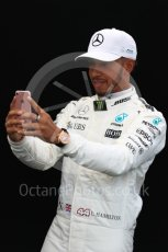 World © Octane Photographic Ltd. Formula 1 - Australian Grand Prix - FIA Driver Photo Call. Lewis Hamilton - Mercedes AMG Petronas F1 W08 EQ Energy+. Albert Park Circuit. Thursday 23rd March 2017. Digital Ref: 1790LB1D8135