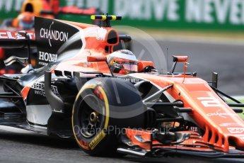 World © Octane Photographic Ltd. Formula 1 - Italian Grand Prix - Practice 2. Stoffel Vandoorne - McLaren Honda MCL32. Monza, Italy. Friday 1st September 2017. Digital Ref: 1939LB1D2350