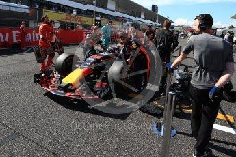 World © Octane Photographic Ltd. Formula 1 - Japanese Grand Prix - Sunday - Grid. Max Verstappen - Red Bull Racing RB13. Suzuka Circuit, Suzuka, Japan. Sunday 8th October 2017. Digital Ref:1979LB2D5346
