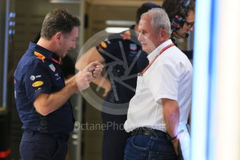 World © Octane Photographic Ltd. Formula 1 - Abu Dhabi GP - Qualifying.Helmut Marko - advisor to the Red Bull GmbH Formula One Teams and head of Red Bull's driver development program and Christian Horner - Team Principal of Red Bull Racing. Yas Marina Circuit, Abu Dhabi. Saturday 24th November 2018.