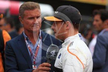 World © Octane Photographic Ltd. Formula 1 – Belgian GP - Grid. McLaren MCL33 – Stoffel Vandoorne. Spa-Francorchamps, Belgium. Sunday 26th August 2018.