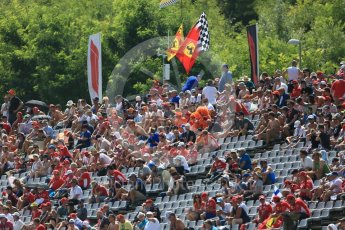 World © Octane Photographic Ltd. Formula 1 – Hungarian GP - Practice 3. Fans in the T1 grandstand. Hungaroring, Budapest, Hungary. Saturday 28th July 2018.