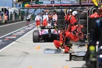World © Octane Photographic Ltd. FIA Formula 2 (F2) – Hungarian GP - Race 2. BWT Arden - Maximilian Gunther. Hungaroring, Budapest, Hungary. Sunday 29th July 2018.