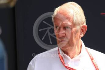 World © Octane Photographic Ltd. Formula 1 - Hungarian GP - Practice 3. Helmut Marko - advisor to the Red Bull GmbH Formula One Teams and head of Red Bull's driver development program. Hungaroring, Budapest, Hungary. Saturday 3rd August 2019.