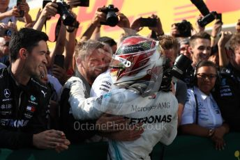 World © Octane Photographic Ltd. Formula 1 – Hungarian GP - Parc Ferme. Mercedes AMG Petronas Motorsport AMG F1 W10 EQ Power+ - Lewis Hamilton. Hungaroring, Budapest, Hungary. Sunday 4th August 2019.