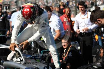 World © Octane Photographic Ltd. Formula 1 – Japanese GP - Grid. Mercedes AMG Petronas Motorsport AMG F1 W10 EQ Power+ - Lewis Hamilton. Suzuka Circuit, Suzuka, Japan. Sunday 13th October 2019.