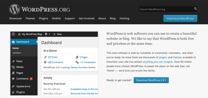 Wordpress Widget and Plugin