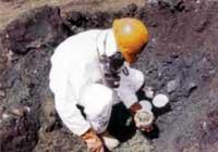 Asbestos and Hazardous Materials
