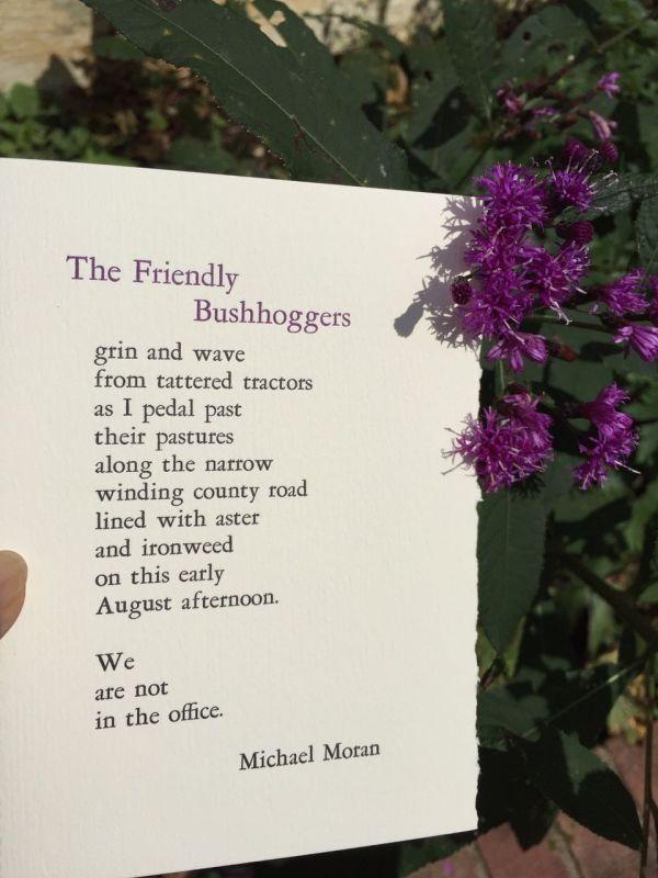 The Friendly Bushhogers