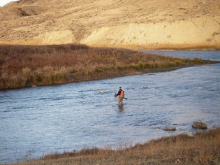 River Crossing with Humphreys