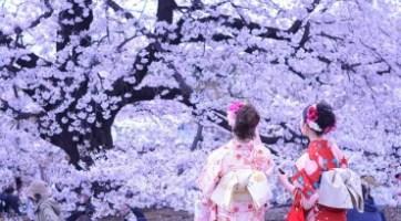 雙溫泉 • 日本 • 東京 • 大阪 頂級豪華7天遊