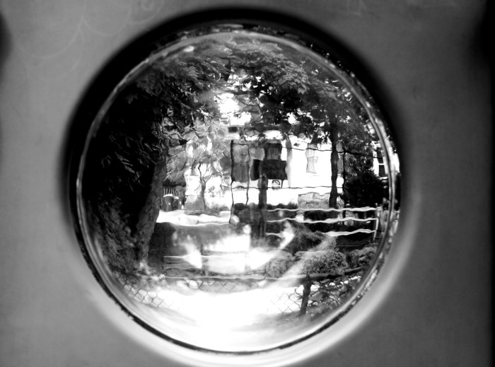 """Looking Glass at Murphy Park"" © Edward S. Gault"