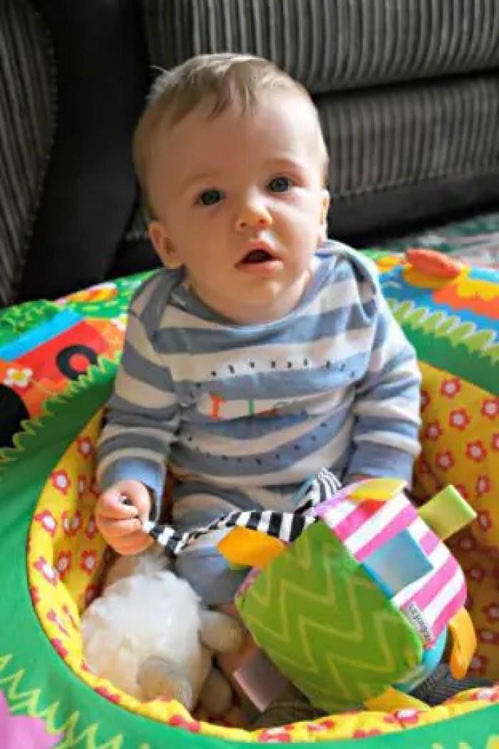 Piglet 7 months update oddhogg.com