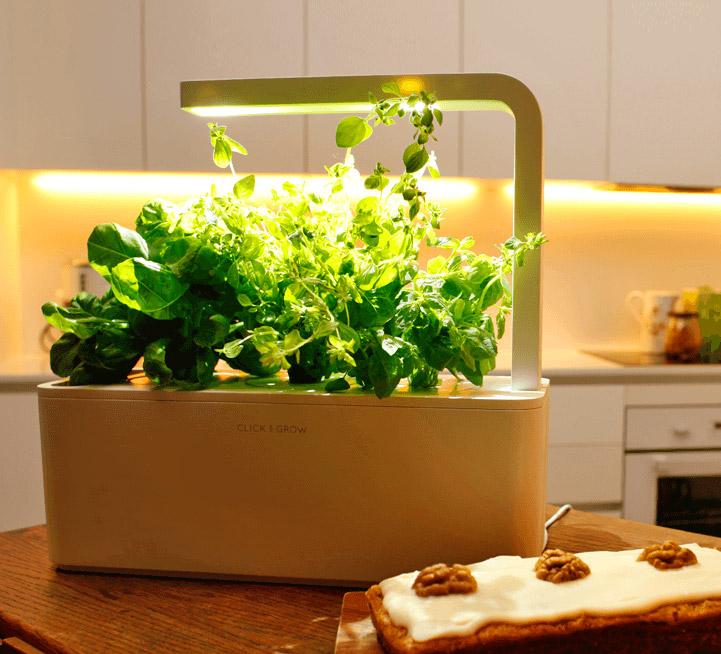 Best Kitchen Gadgets Amazon
