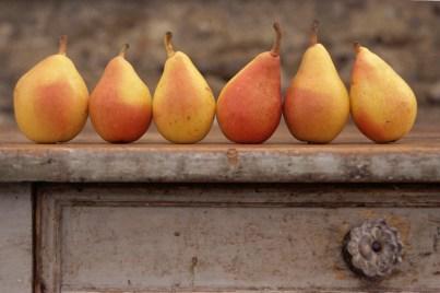 tabletop-pears