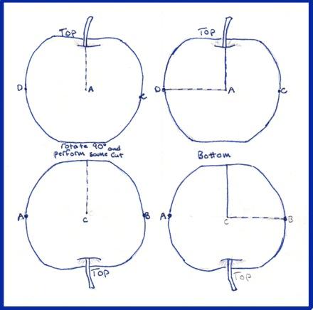 apple-carving-diagram