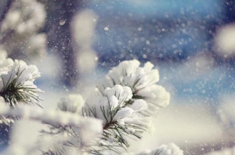 Heavy,wet snow