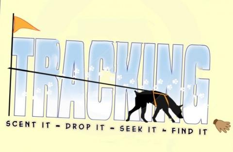 tracking large