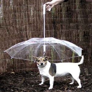 Umbrella-for-Dogs
