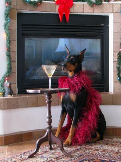 Pet-Dress-Up-Day