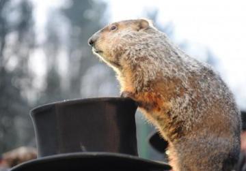 Groundhog Day, Candlemas, Crêpes Day