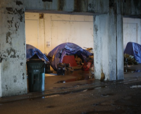 Homeless, Chicago Wilson Viaduct