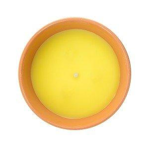 13-cm-Citronella-Kynttilä-Terrakottaruukussa-1
