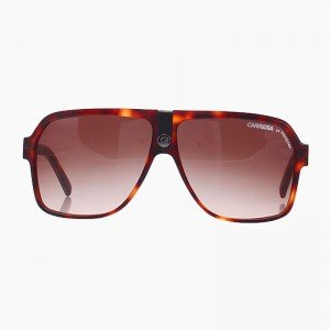 CARRERA-33-240311-WRDSH-BLONDE-HAVA-62-mm-1