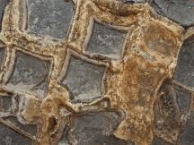 Moeraki Boulders - 4 of 7