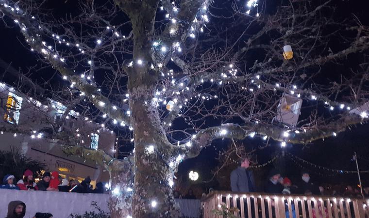 Bluestone Wales - Christmas Lights in the Village