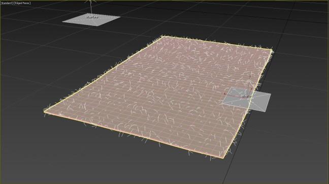 cartpet.jpg