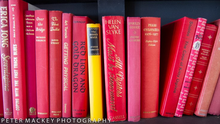 This image has an empty alt attribute; its file name is books-ocd.jpg