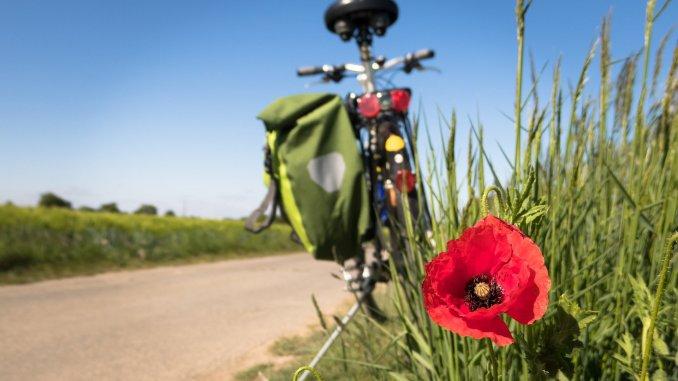 Fahrradwege Märkische-Oderland