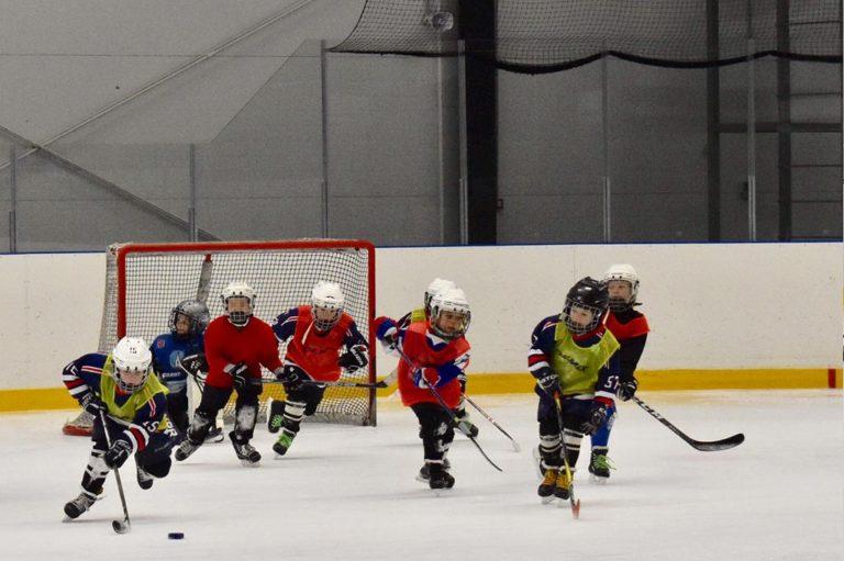 хоккейные манишки