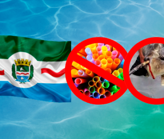 Estudante cria petição contra uso de canudo plástico em Maceió