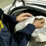 Acusados de tráfico de drogas são presos com 41 kg de maconha em Canapi