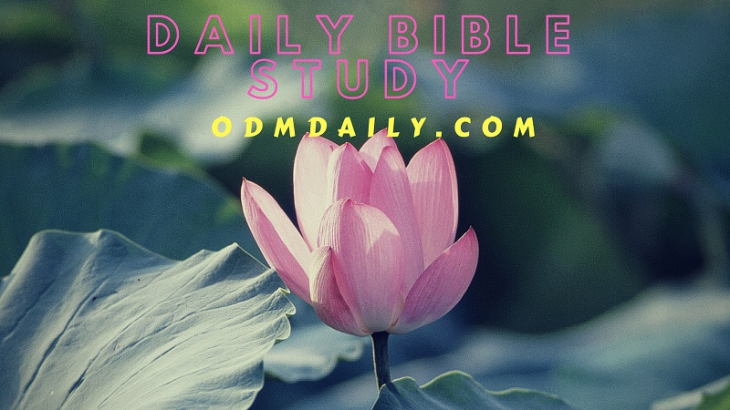 ODM Daily Reading 18 December 2018