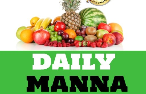 Our Daily Manna Devotional Day 19 February 2021