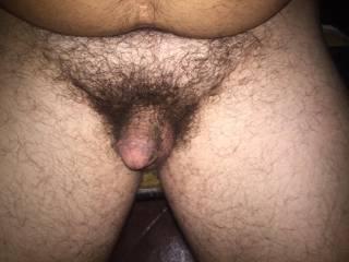 My Little Hairy Dick