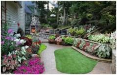 дорожки с растениями возле дома