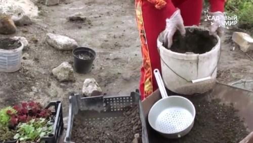 смесь для садовых растений, земля