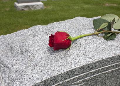Růže na hrobu