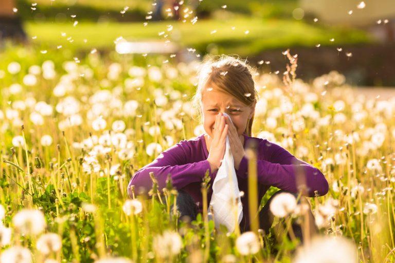 Alergia na pyłki
