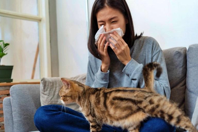 Co to jest alergia? Rodzaje, przyczyny, objawy i leczenie alergii.