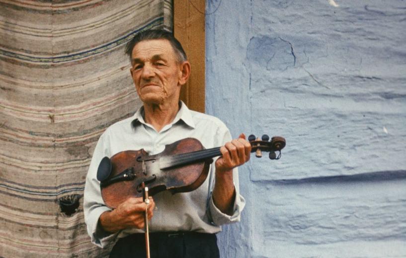 skrzypkowie