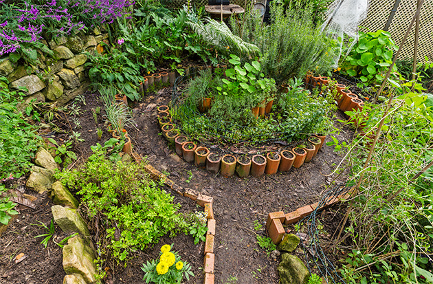 Permaculture: A Contribution to Conserving California's ... on Backyard Permaculture Design id=62341