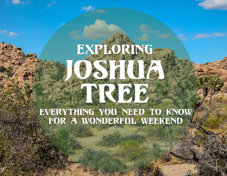 A Guide to Exploring Joshua Tree by Odyssey Designs 1