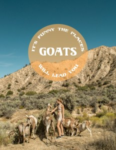 It's funny the places GOATS will lead you. See my Meditative Goat Walk on Odyssey Designs!