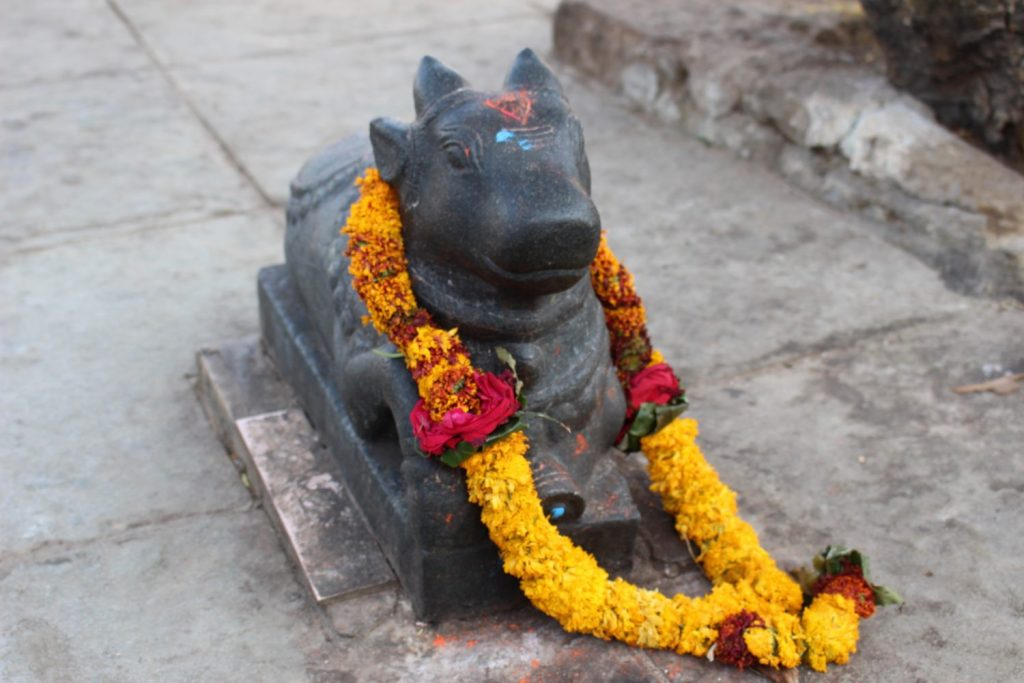 the bull is revered in Hindu mythology
